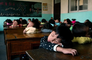 chinos-siesta-ok